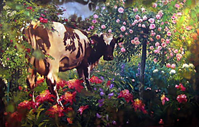 Cow in Monet's Garden, oil on canvas 78inX108in